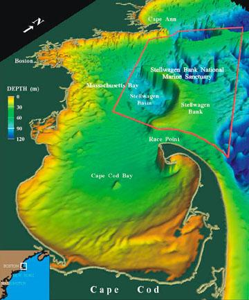 About Location Stellwagen Bank National Marine Sanctuary