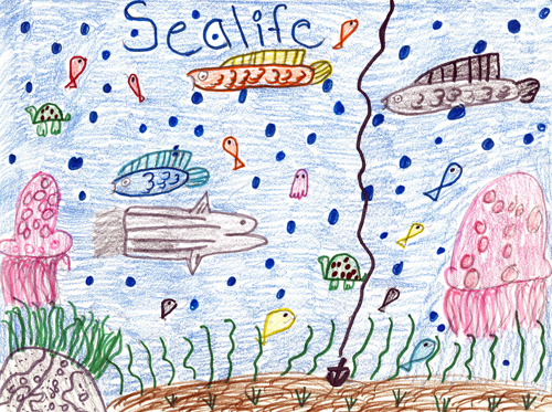 honorable mention certificate template - 2007 contest k 4 national marine sanctuaries template
