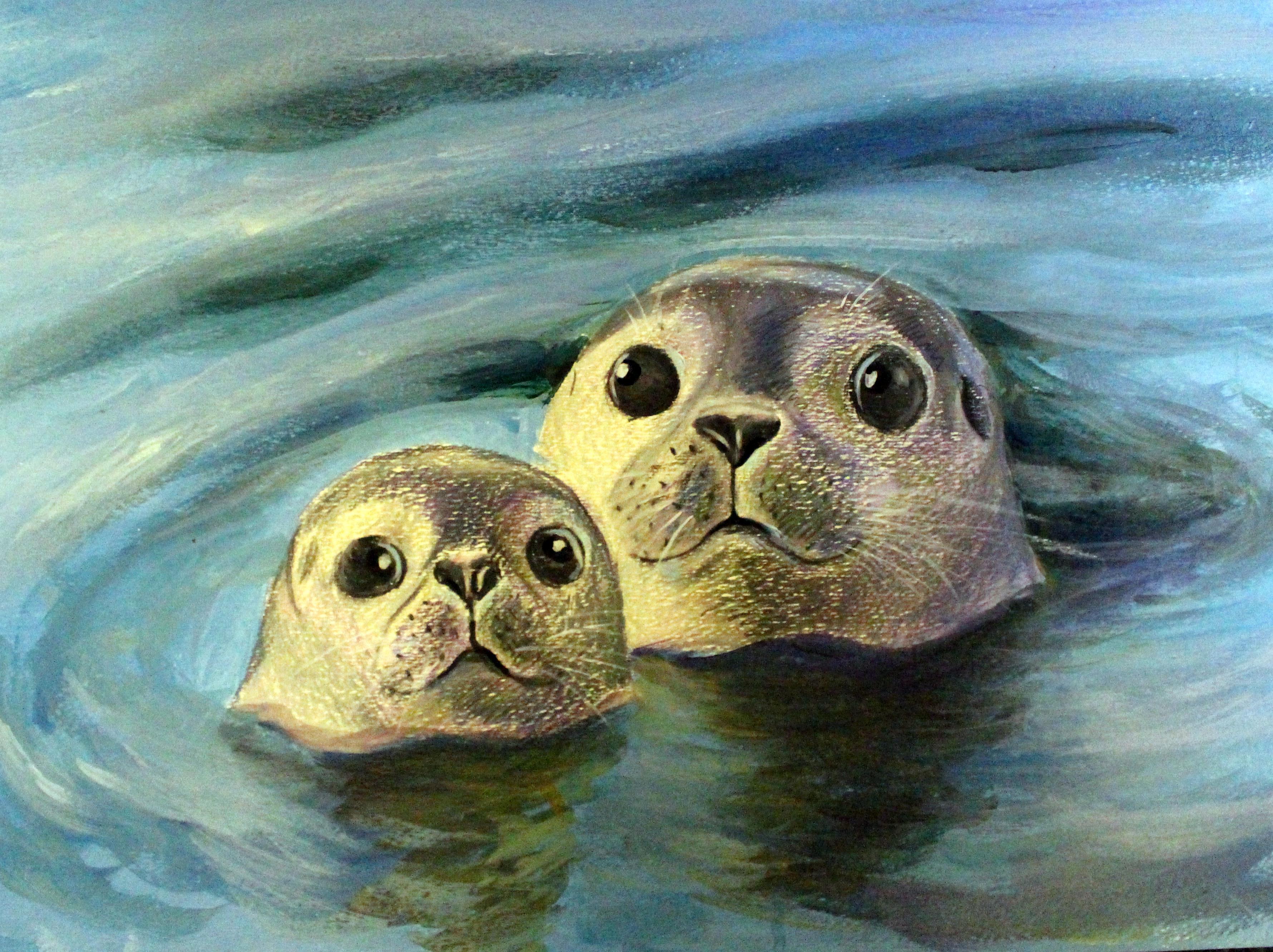 2018 Marine Art Contest - Middle School | Stellwagen Bank