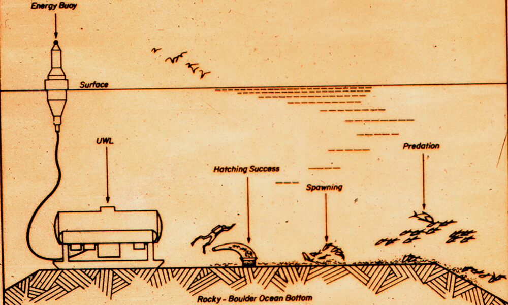 Drawing showing how Helgoland was utilized