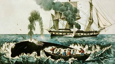 painting of a whale being hunted